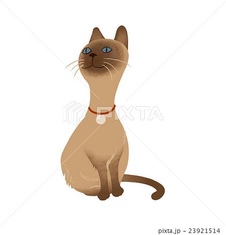 シャム猫のイラスト素材 Pixta