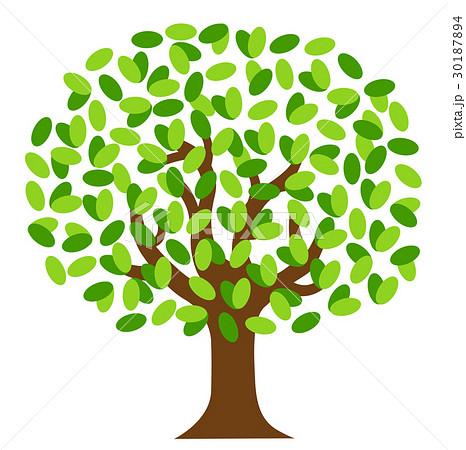 木 葉 樹木 葉っぱのイラスト素材 Pixta