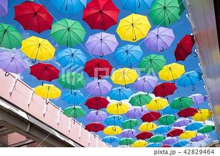 「雨傘 海外」の画像検索結果