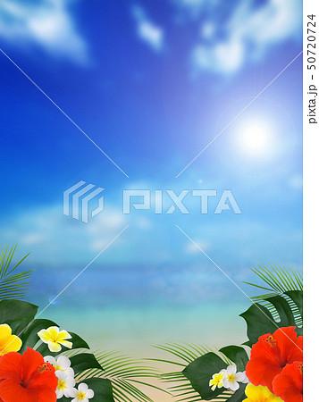 海綺麗な海のイラスト素材集 Pixtaピクスタ